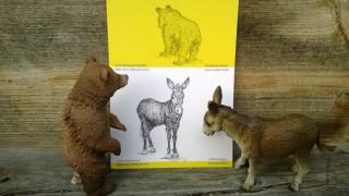 Kunstbetrachtung_Baer und Esel